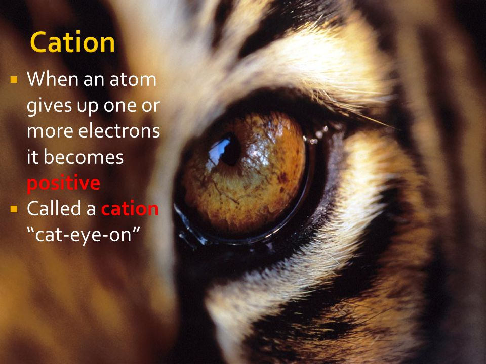 Cation When an atom gives up one or more electrons it becomes positive