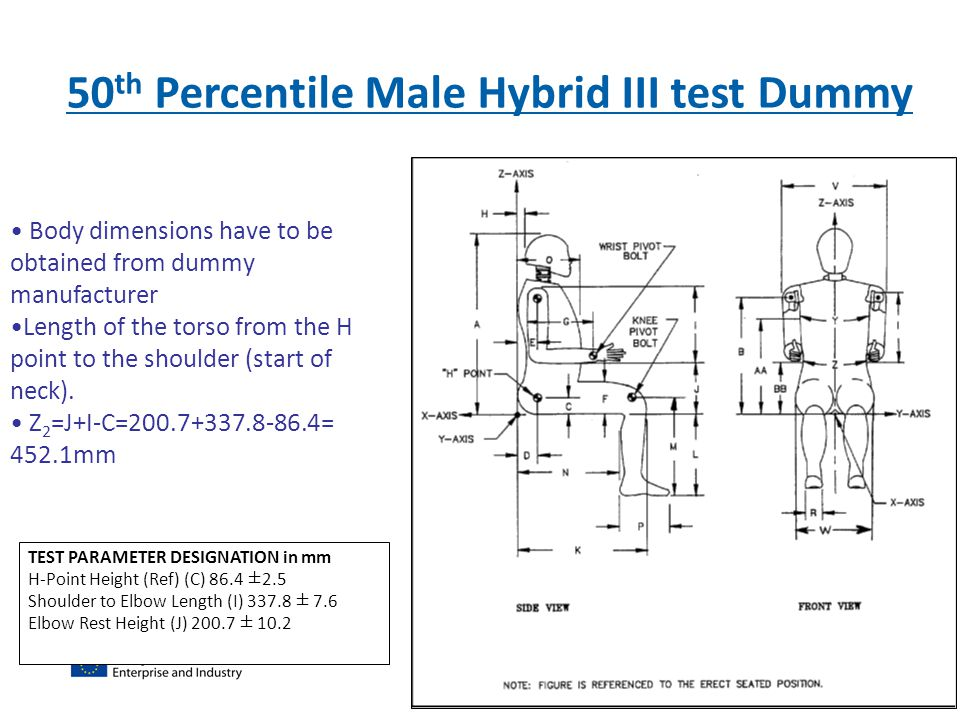 50th Percentile Male Hybrid III test Dummy