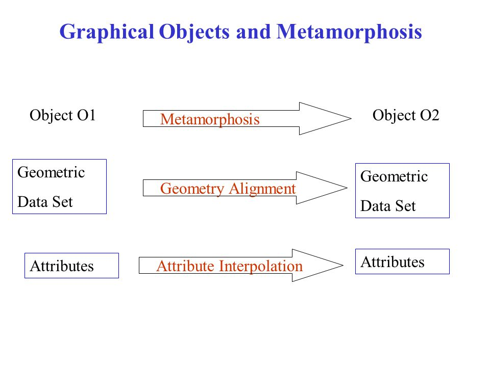 Graphical Objects and Metamorphosis