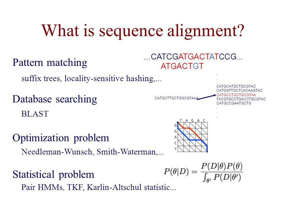 What is sequence alignment
