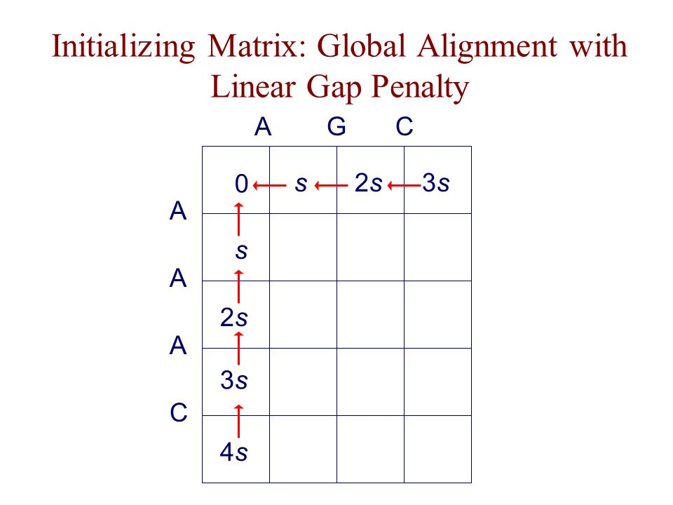 Initializing Matrix: Global Alignment with Linear Gap Penalty