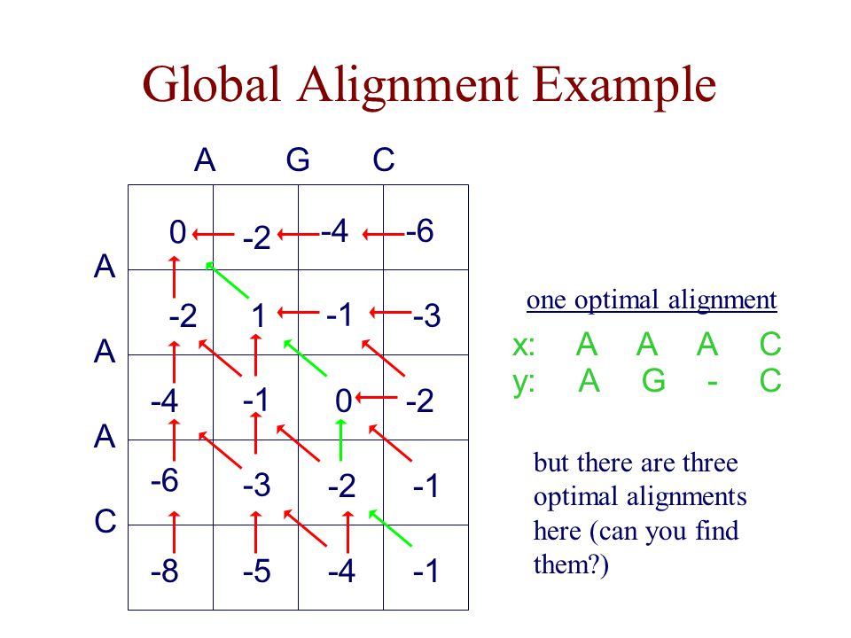 Global Alignment Example