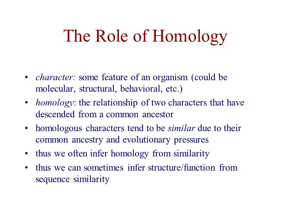 The Role of Homology character: some feature of an organism (could be molecular, structural, behavioral, etc.)