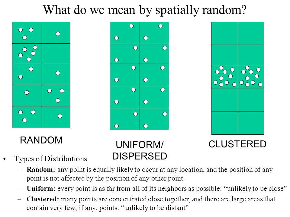 What do we mean by spatially random