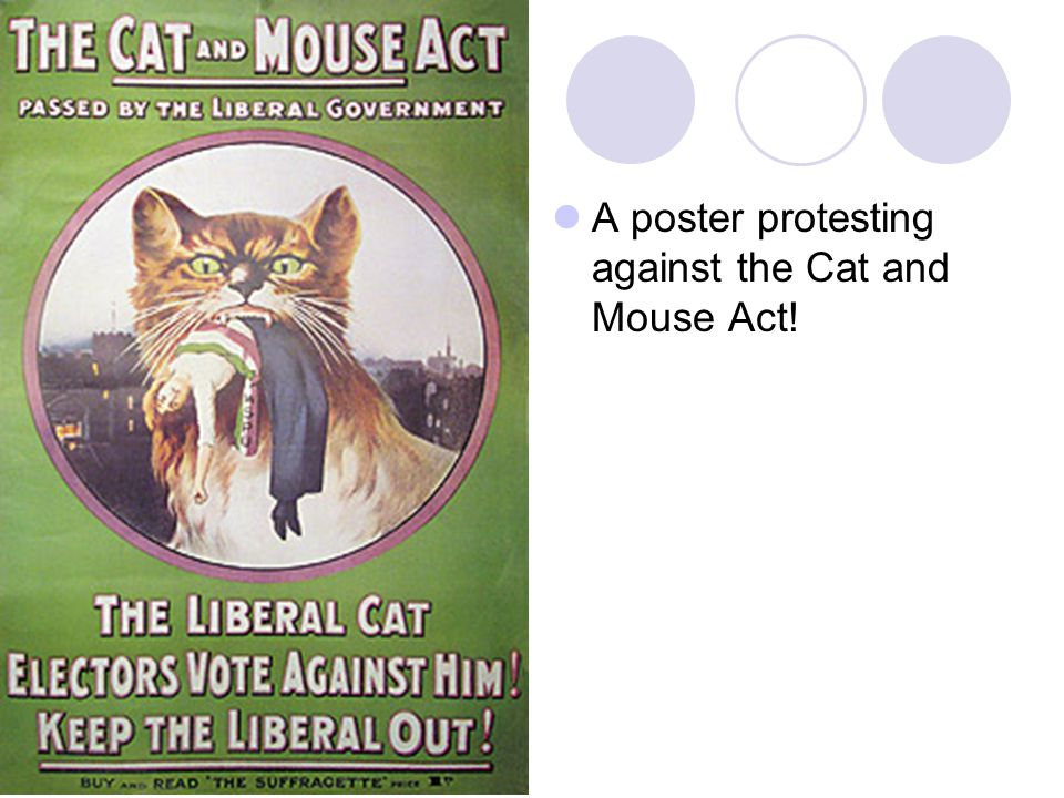 A poster protesting against the Cat and Mouse Act!