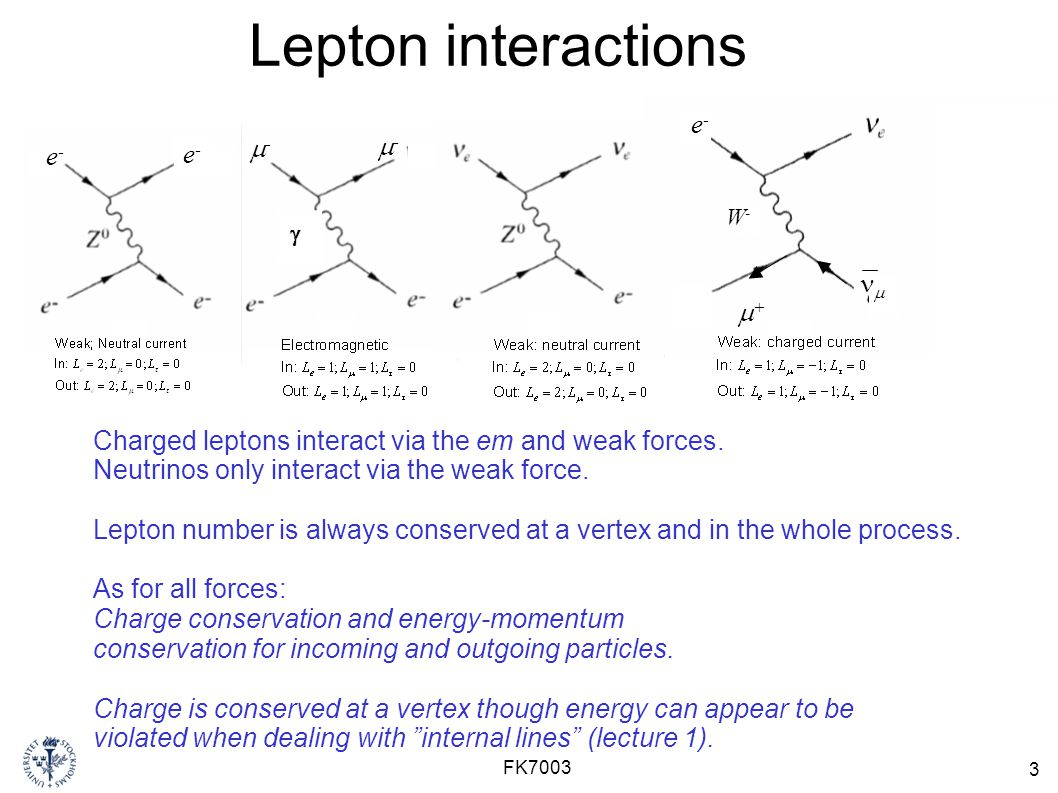 Lepton interactions e- m- m- e- e- nm m+