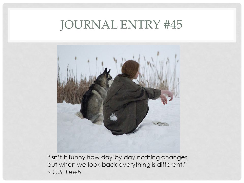 Journal entry #45 Isn't it funny how day by day nothing changes, but when we look back everything is different.