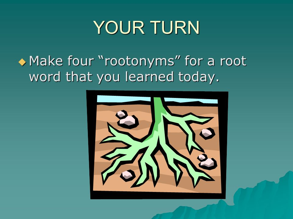 YOUR TURN Make four rootonyms for a root word that you learned today.