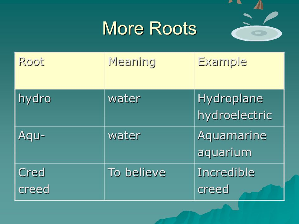 More Roots Root Meaning Example hydro water Hydroplane hydroelectric
