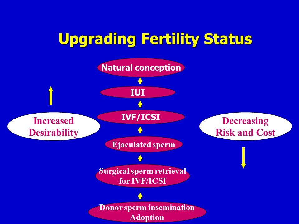 Surgical sperm retrieval Donor sperm insemination