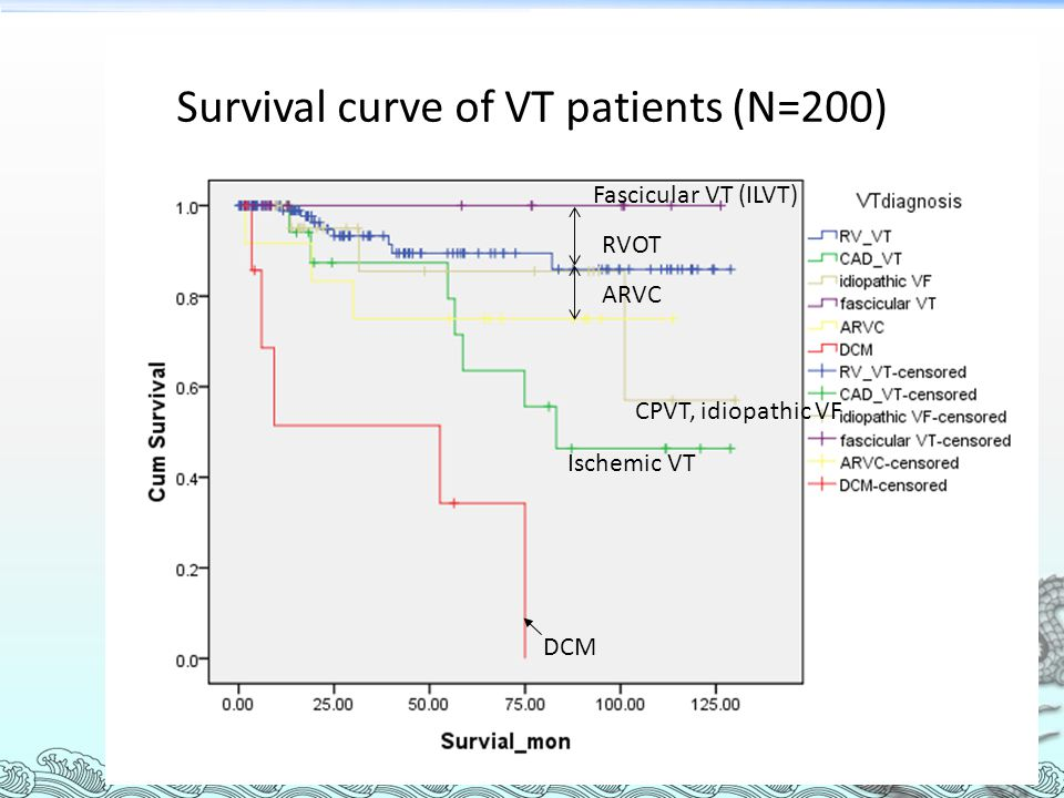 Survival curve of VT patients (N=200)