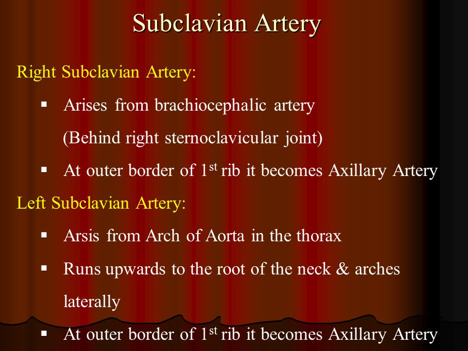 Subclavian Artery Right Subclavian Artery: