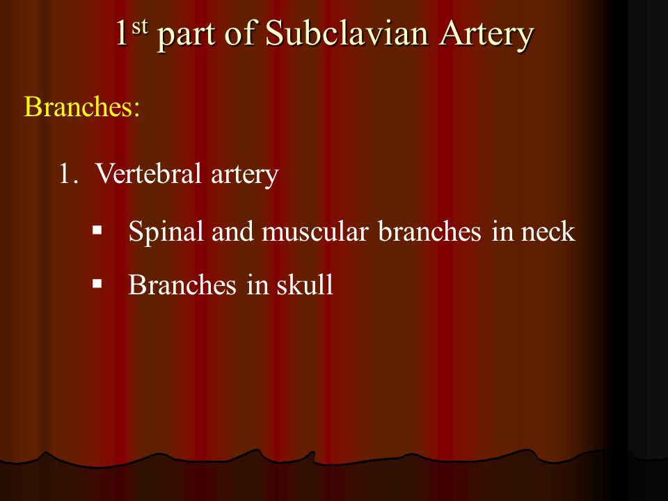 1st part of Subclavian Artery