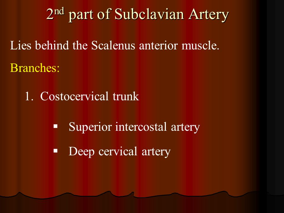 2nd part of Subclavian Artery