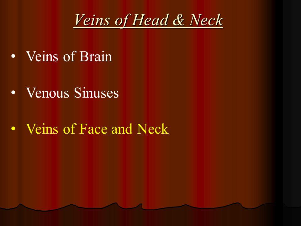 Veins of Head & Neck Veins of Brain Venous Sinuses