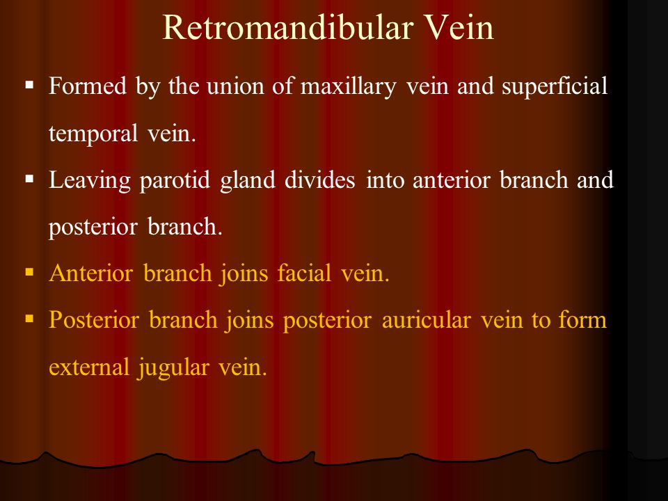 Retromandibular Vein Formed by the union of maxillary vein and superficial temporal vein.