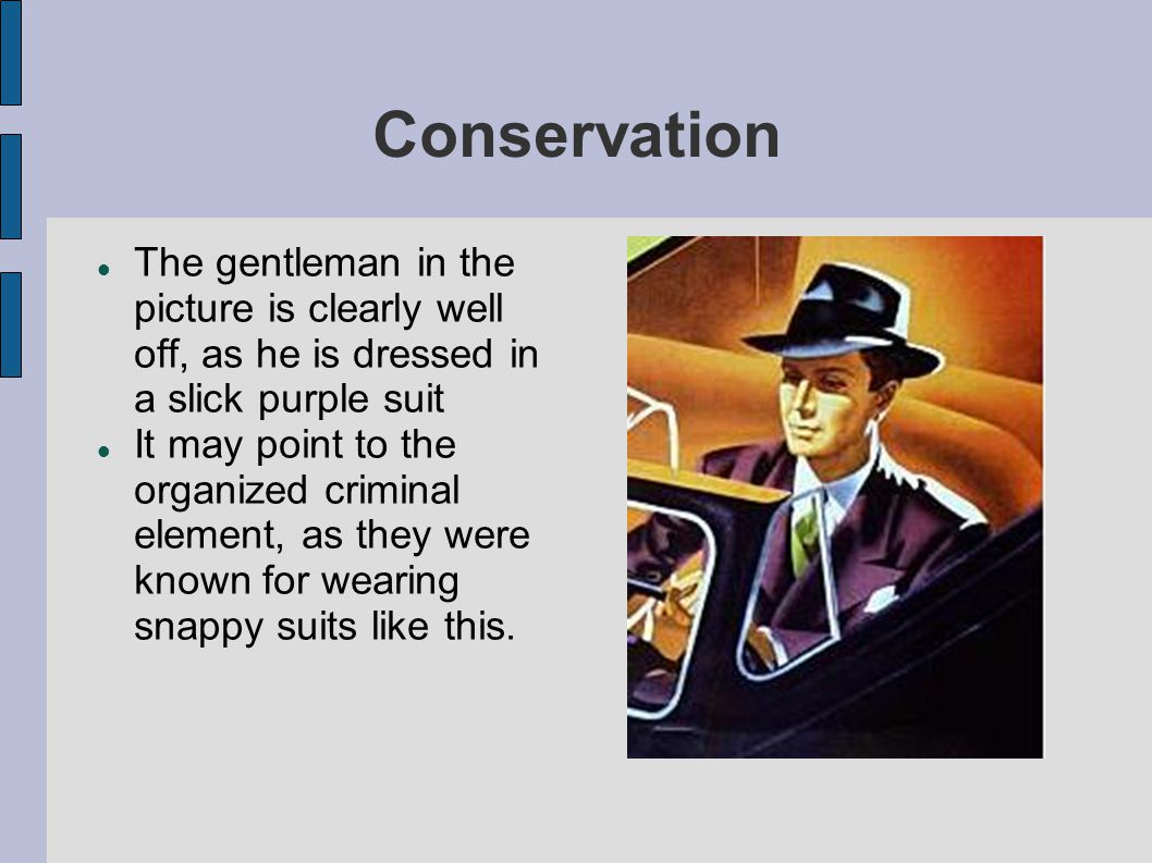 Conservation The gentleman in the picture is clearly well off, as he is dressed in a slick purple suit.