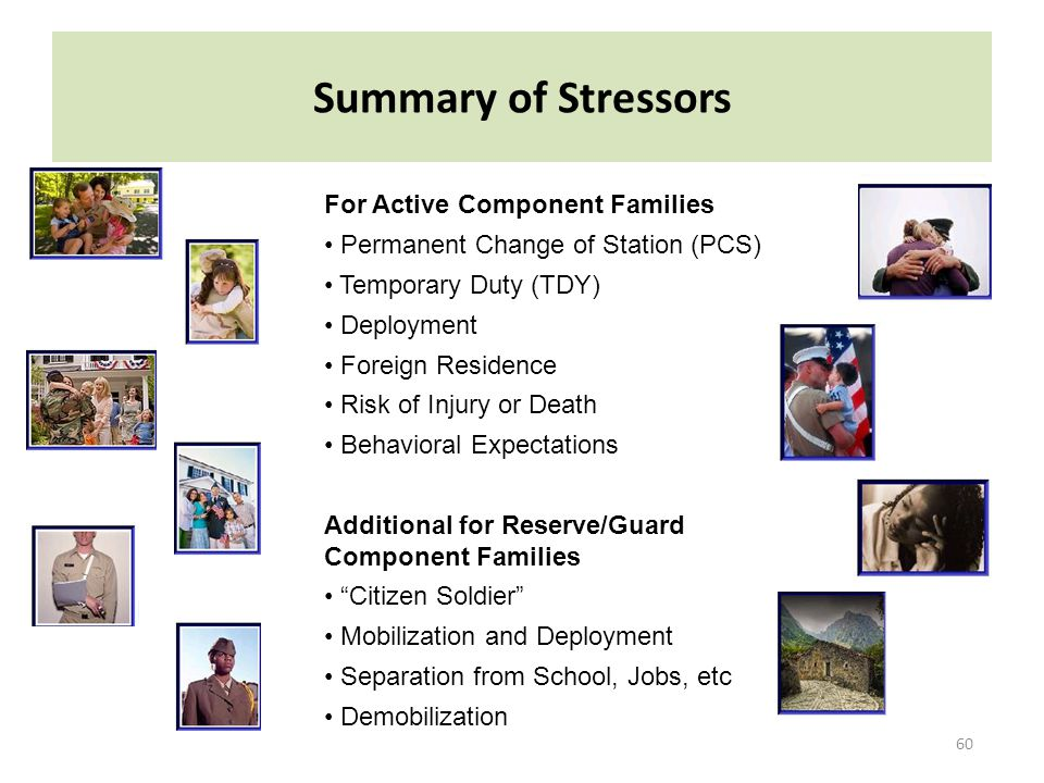 Summary of Stressors For Active Component Families