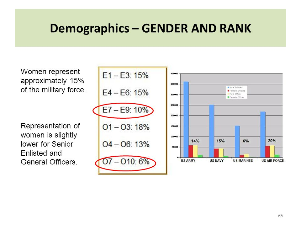 Demographics – GENDER AND RANK