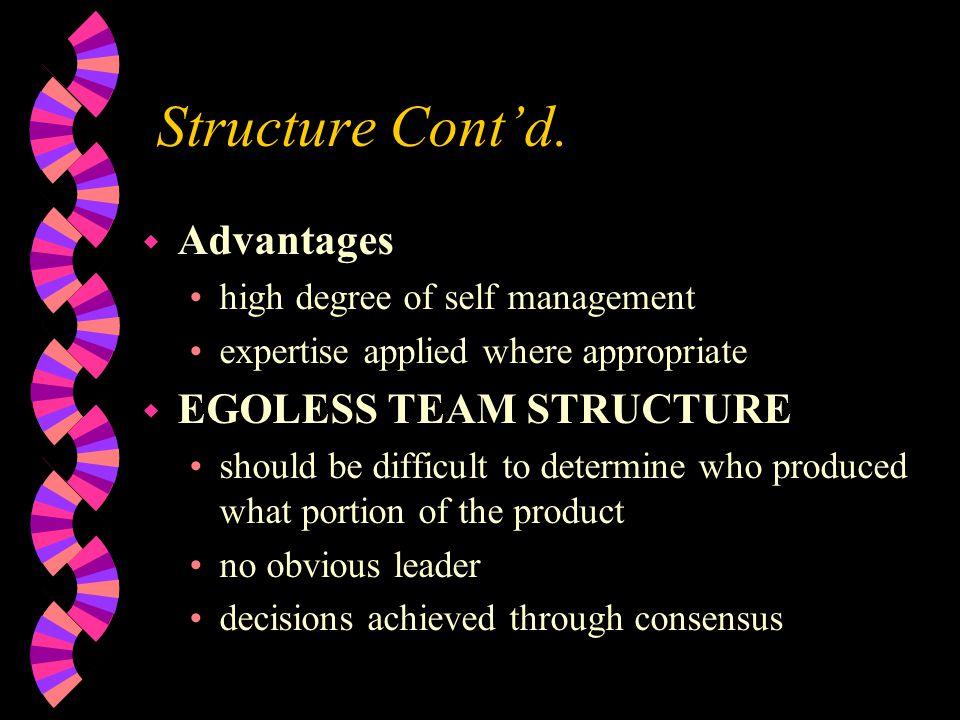 Structure Cont'd. Advantages EGOLESS TEAM STRUCTURE