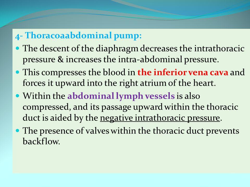 4- Thoracoaabdominal pump: