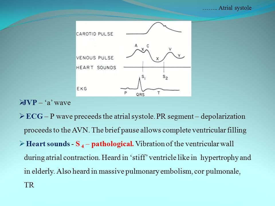 …….. Atrial systole JVP – 'a' wave.