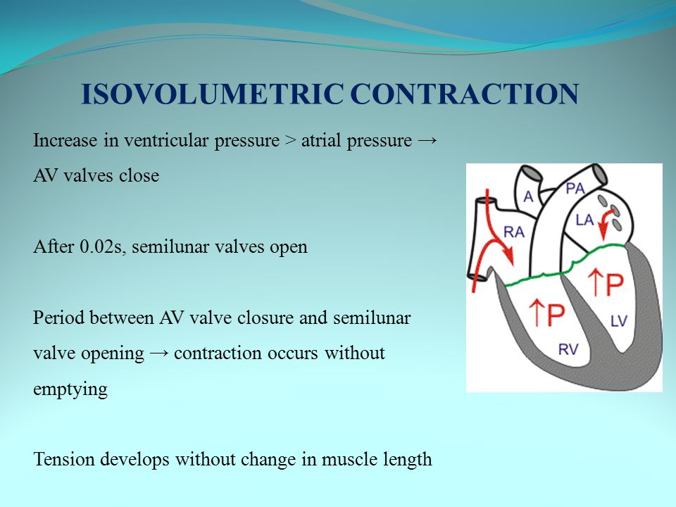 ISOVOLUMETRIC CONTRACTION