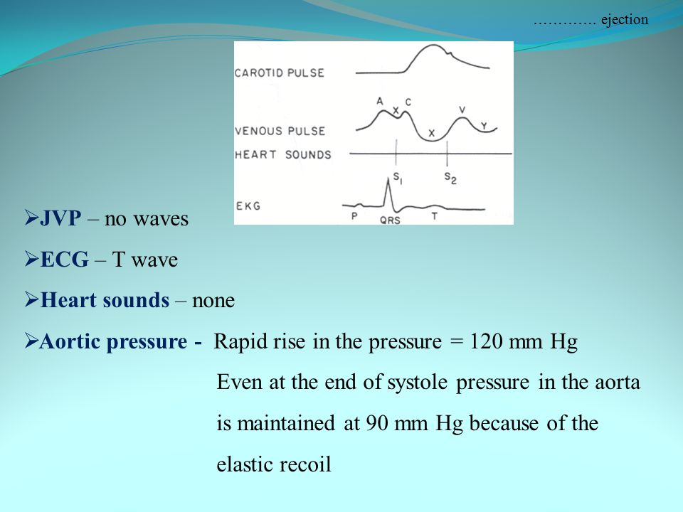 Aortic pressure - Rapid rise in the pressure = 120 mm Hg