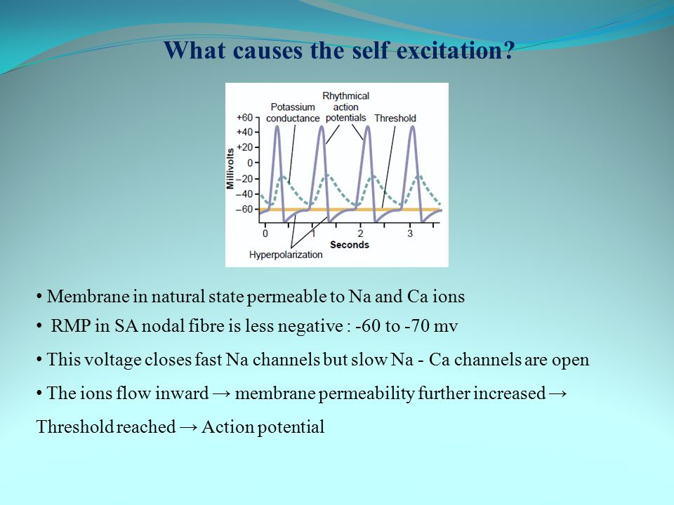 What causes the self excitation