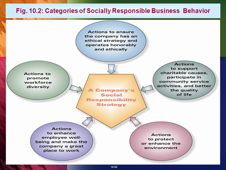 Fig. 10.2: Categories of Socially Responsible Business Behavior