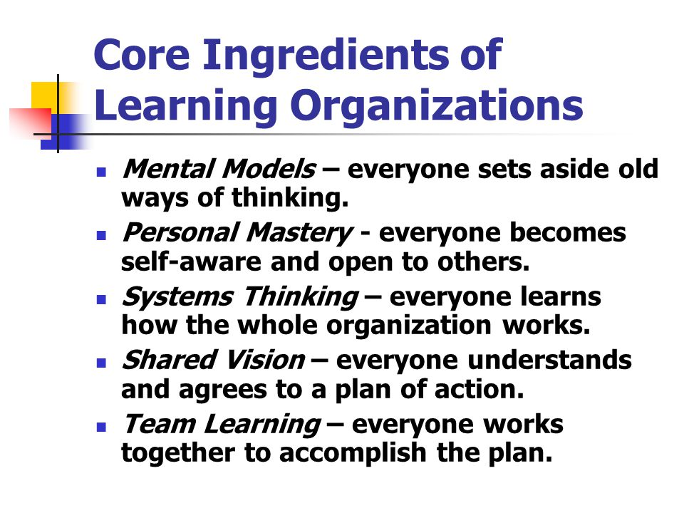 Core Ingredients of Learning Organizations
