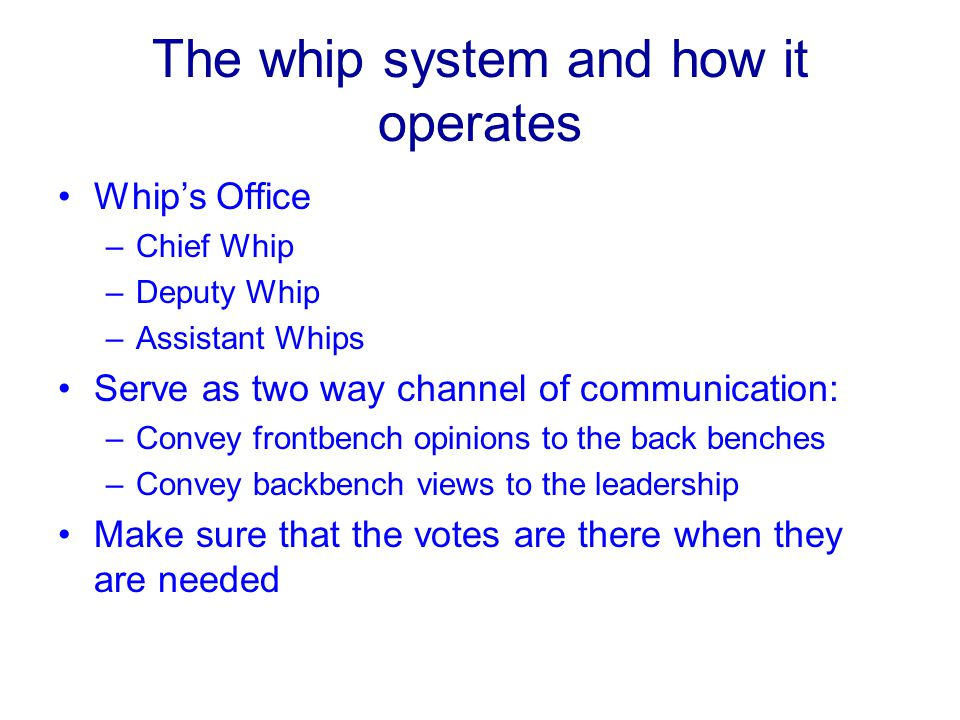 The whip system and how it operates