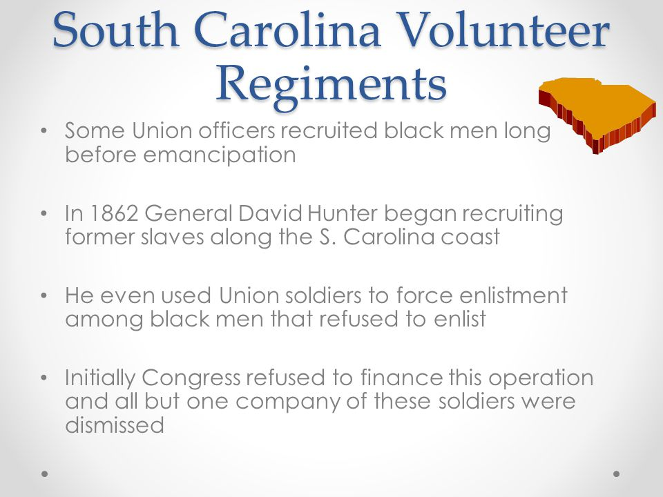 South Carolina Volunteer Regiments