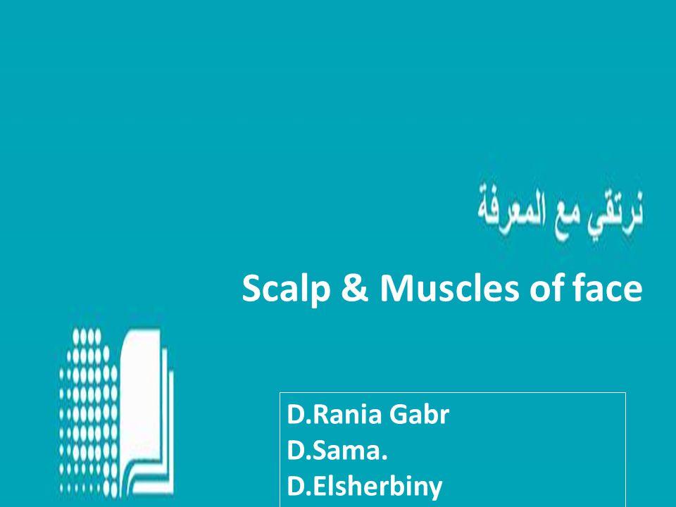 Scalp & Muscles of face D.Rania Gabr D.Sama. D.Elsherbiny