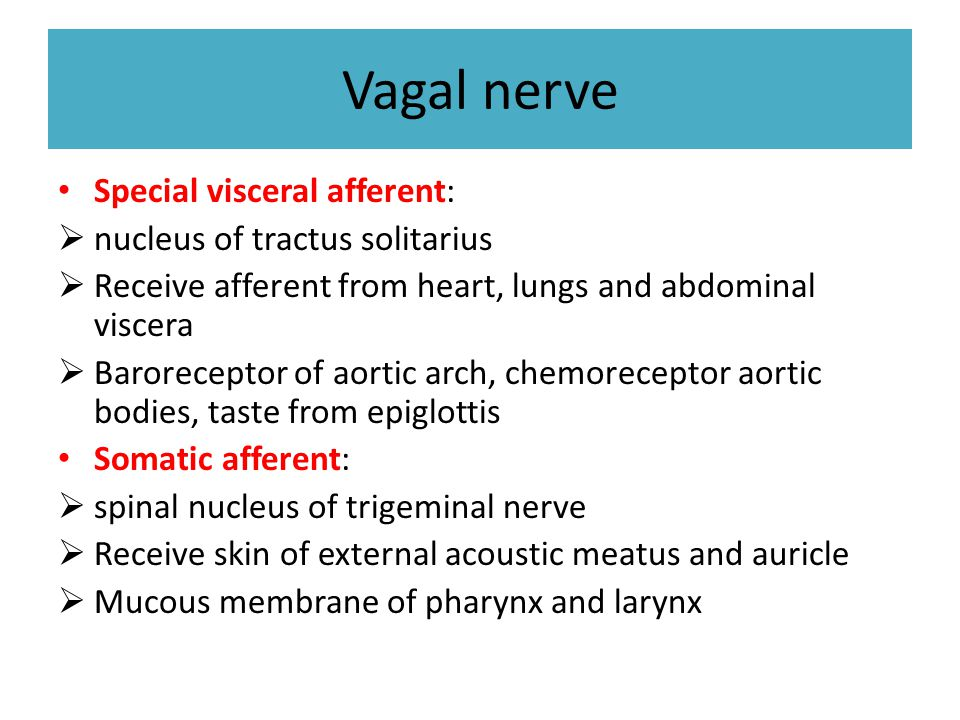 Vagal nerve Special visceral afferent: nucleus of tractus solitarius