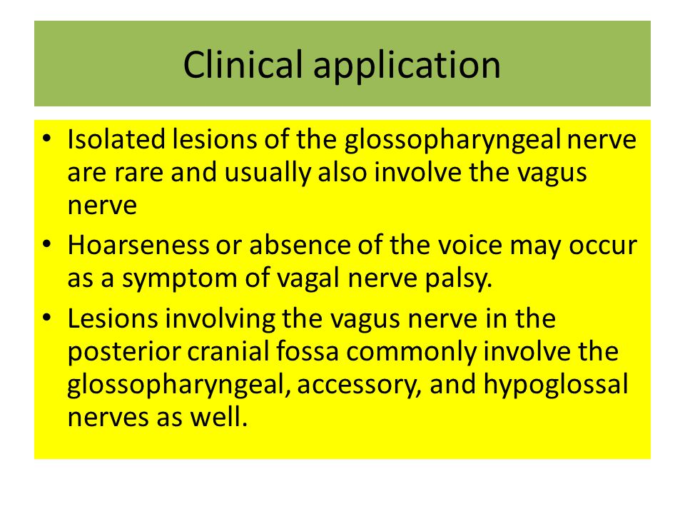 Clinical application Isolated lesions of the glossopharyngeal nerve are rare and usually also involve the vagus nerve.