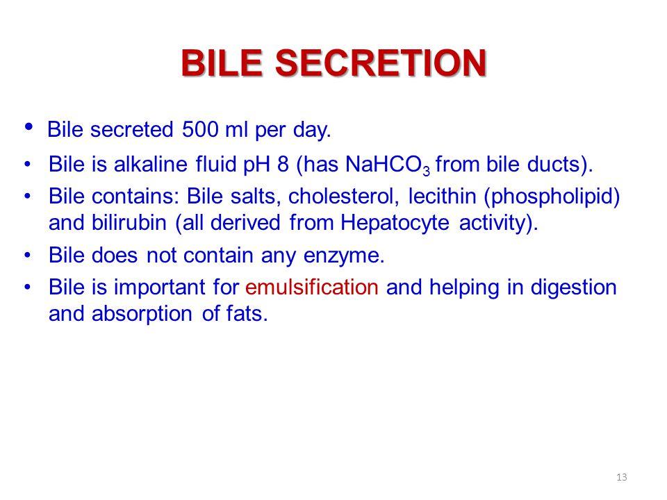 BILE SECRETION Bile secreted 500 ml per day.