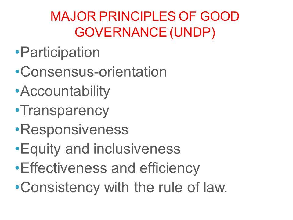 Major Principles of Good Governance (UNDP)