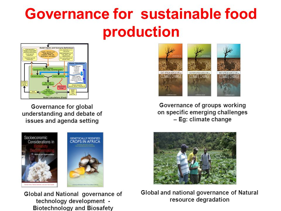 Governance for sustainable food production
