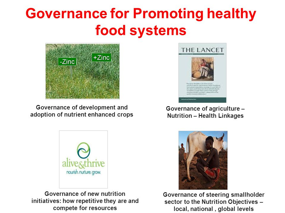 Governance for Promoting healthy food systems