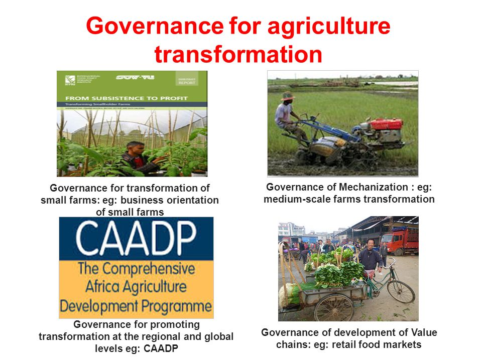 Governance for agriculture transformation