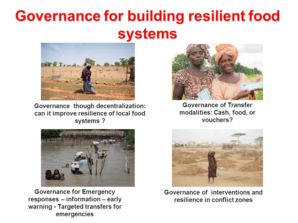 Governance for building resilient food systems