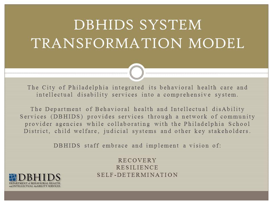 DBHIDS SYSTEM TRANSFORMATION MODEL