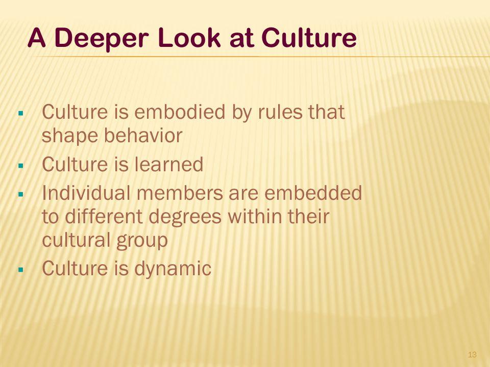A Deeper Look at Culture