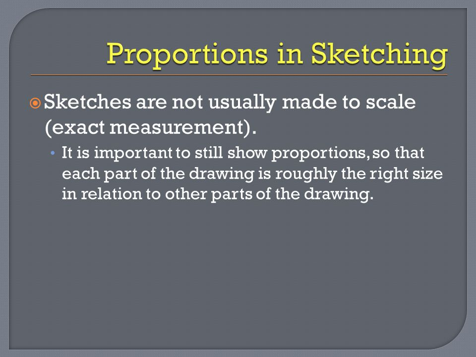 Proportions in Sketching