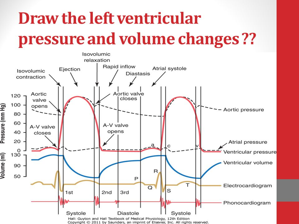 Draw the left ventricular pressure and volume changes