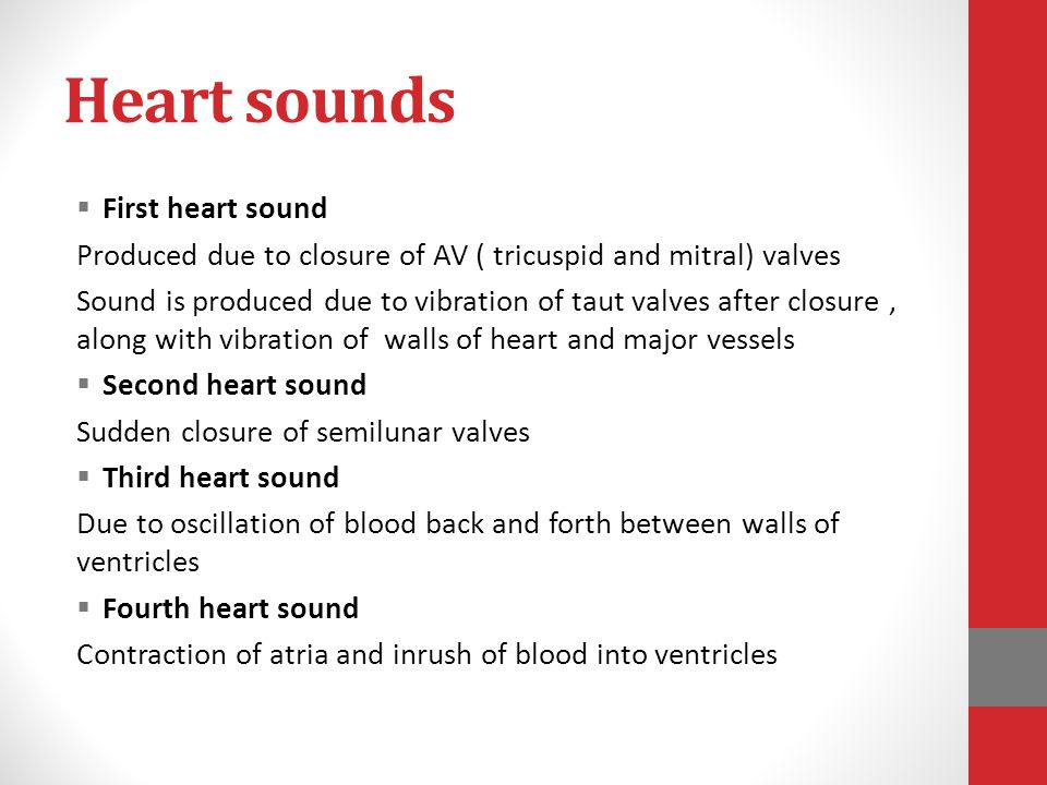 Heart sounds First heart sound