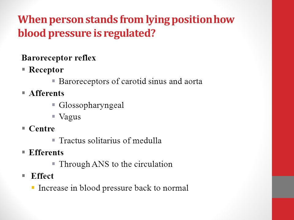 When person stands from lying position how blood pressure is regulated