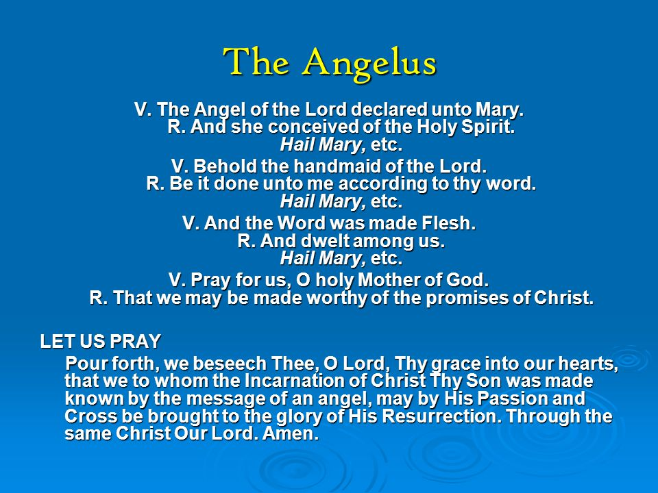 V. And the Word was made Flesh. R. And dwelt among us. Hail Mary, etc.