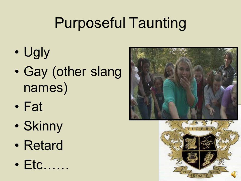 Purposeful Taunting Ugly Gay (other slang names) Fat Skinny Retard